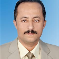 Mohamed M S Nasser